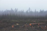 Resolução CONAMA 371/06 Distribuição dos Recursos da Compensação Ambiental