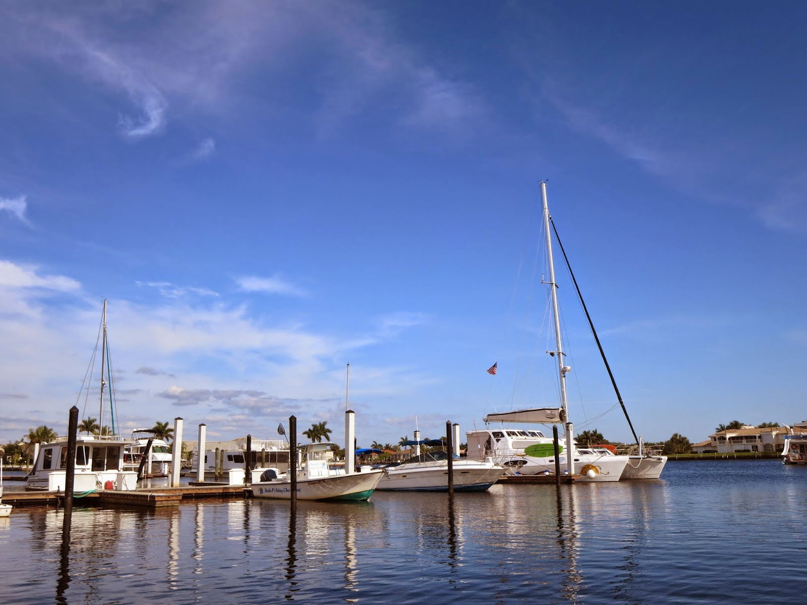 Where to see manatees in Florida: Port of the Islands Marina in Naples