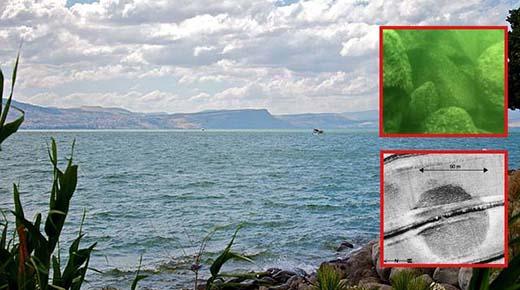 Enorme estructura submarina en el mar de Galilea es un misterio para los arqueólogos