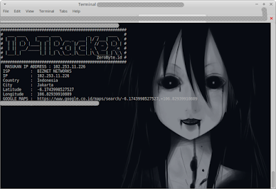 Ip Tracker BASH