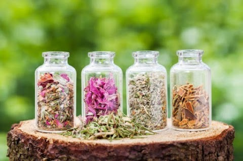 Herbalism and List of Herbs