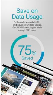 Puffin Browser v4.3.1.1943 APK