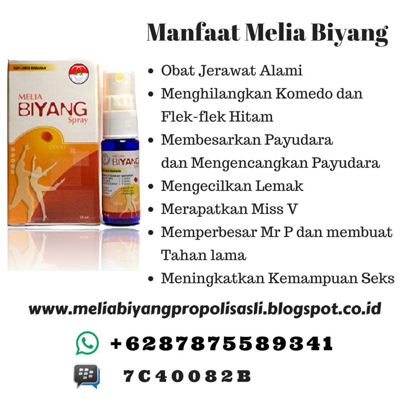 Obat Pembesar Payudara Di Bali