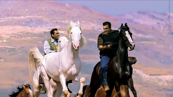 Tubelight_Salman-khan_Images_Wallpaper