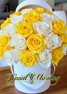 100+ Best Good Morning Flowers Images HD For Whatsapp (2019