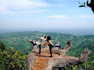 Wisata Pinus Pengger, Destinasi Ngehits di Jogjakarta