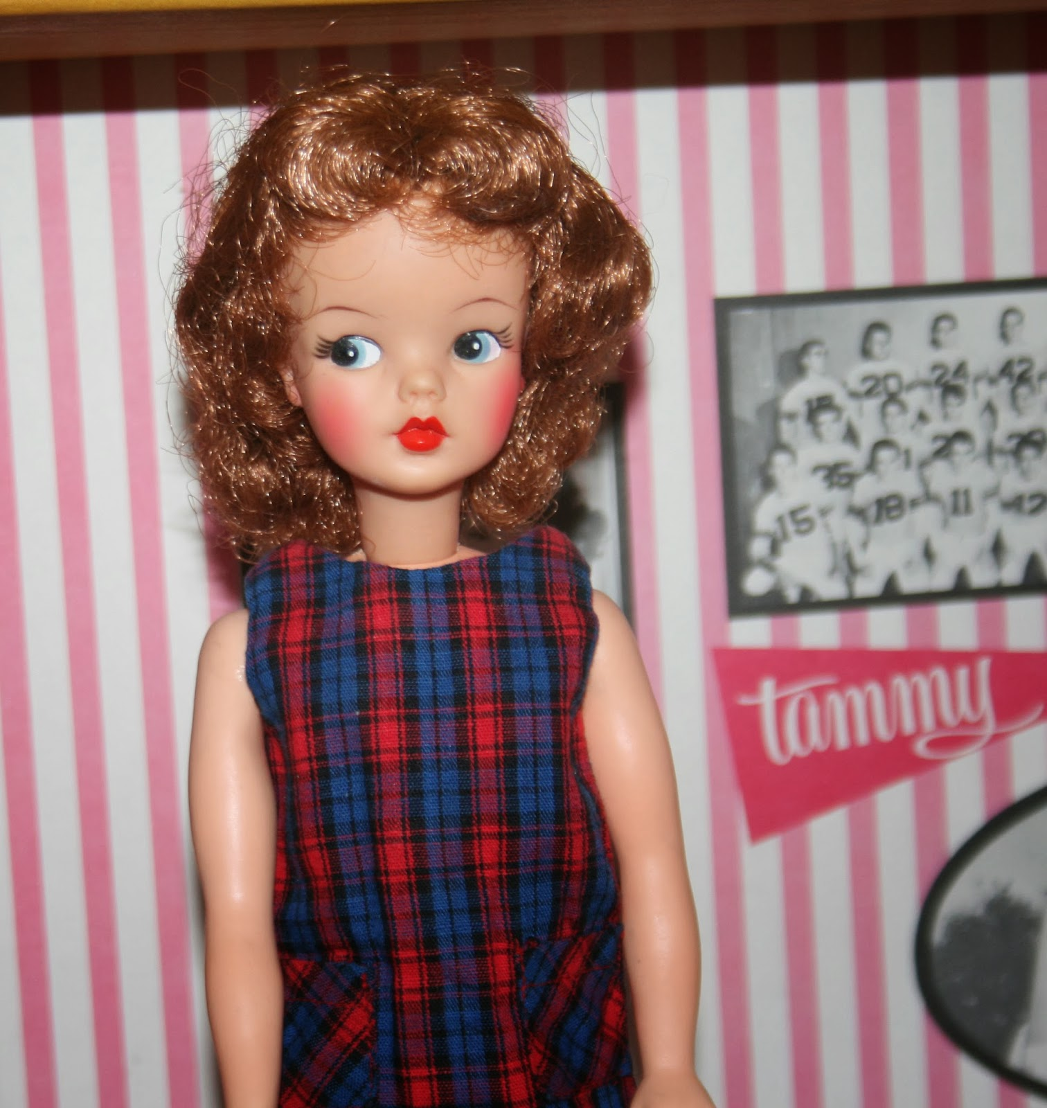 Planet Of The Dolls Doll A Day 71 Tammy In Plaid Jumper
