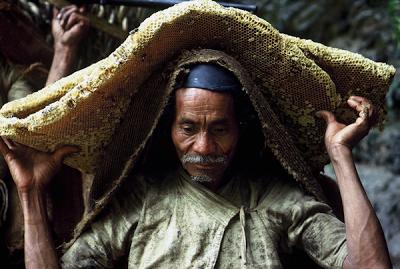 Οι κυνηγοί Μέλι του Νεπάλ