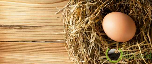 Telur hantu atau Dal Gyal Gwishin