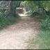 आजादी के 71 साल बाद भी नहीं बनी सड़क- Road Problem in Kaimur