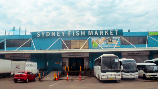 Sydney Fish Market @ New South Wales, Australia 悉尼鱼市场 澳洲澳大利亞 新南威尔士州