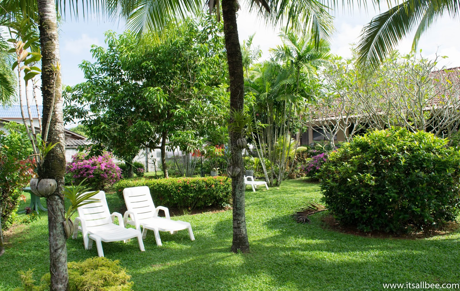Best Place To Stay In Phuket + Gold Diggers Resort Review