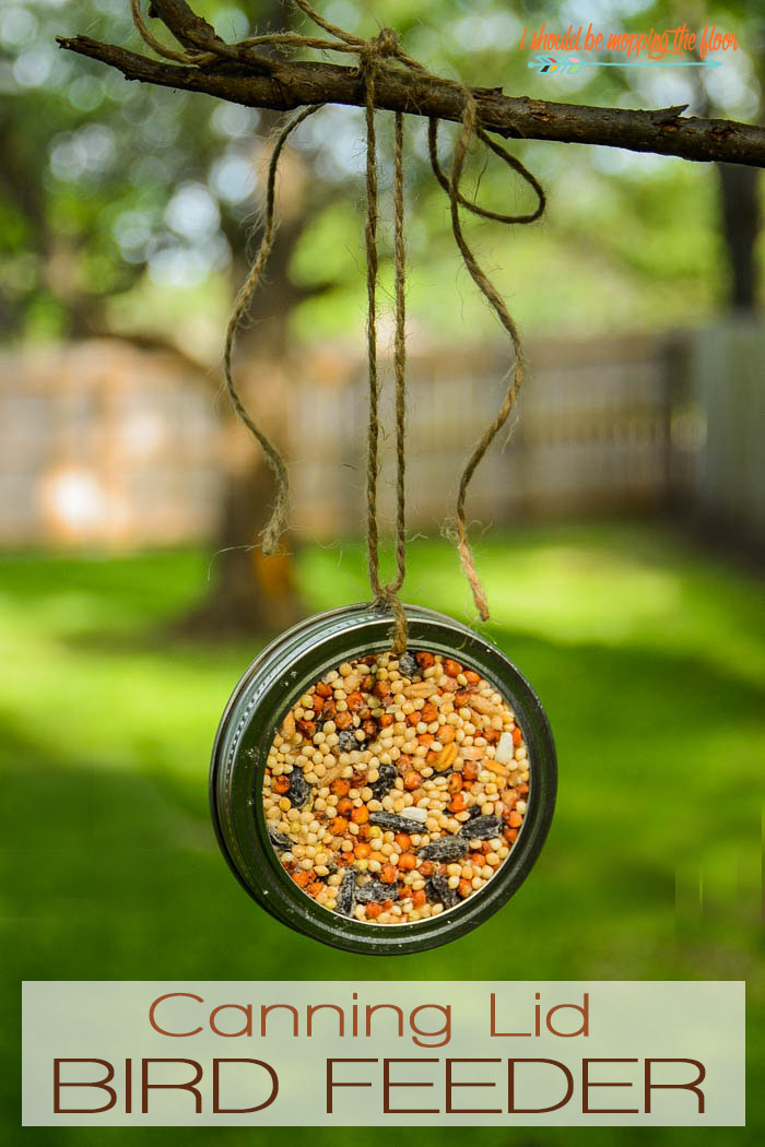 Great Bird Feeder