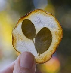 image of a hand holding up a stained glass potato, with a leafy herb visible in the middle