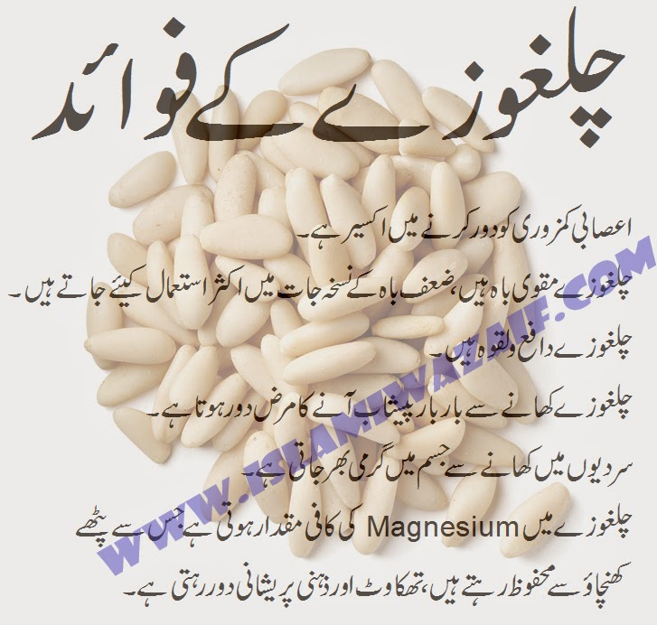 chilgozay ke fawaid in urdu