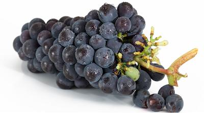 buah, manfaat buah, anggur, buah anggur, kesehatan, artikel kesehatan, nutrisi, manfaat buah anggur, khasiat buah anggur, nutrisi buah anggur, gizi buah anggur,