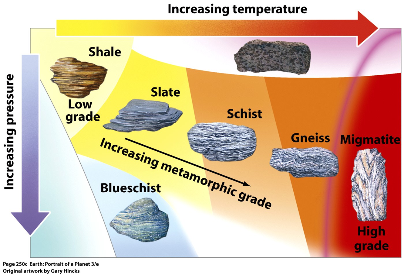Classifications Of Rocks Sedimentary Igneous And