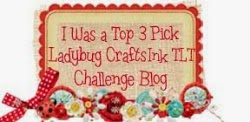 Ladybug Crafts Ink: Top Honors