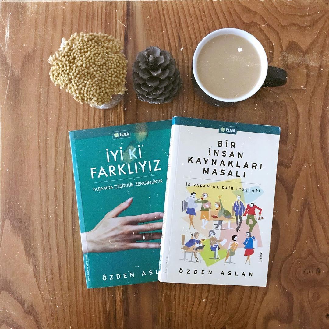 Is Hayatindan Deneyimleri Yansitan Kitaplar (1) (Kitap)