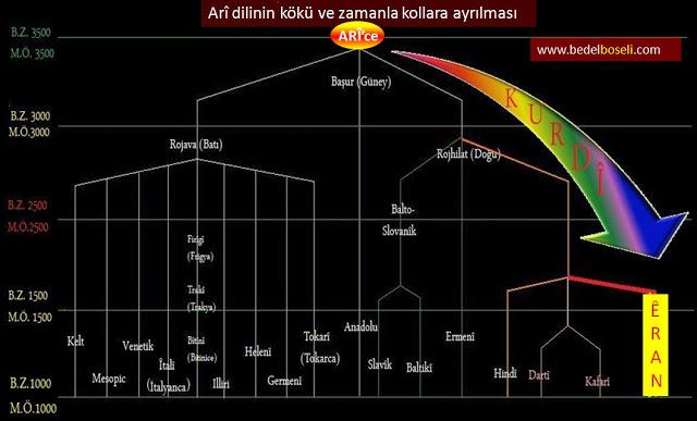 Kürtçe nedir, Kürtçenin kökeni ve tarihi, Kürtler