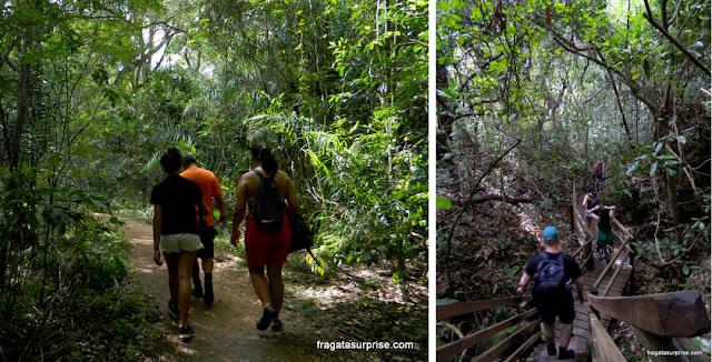 Trilha de sete cachoeiras na Estância Mimosa - Bonito - MS