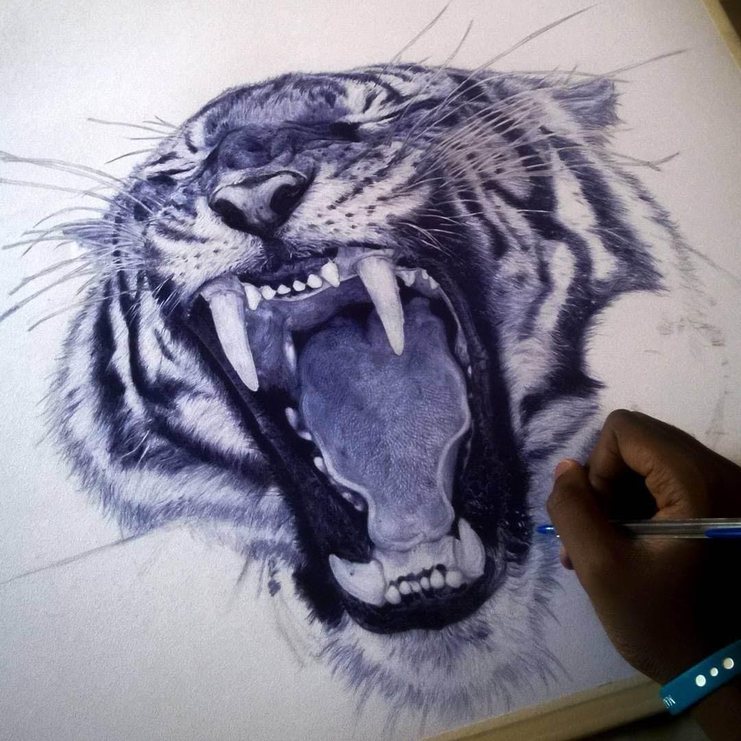 04-Tiger-WIP-Larry-Tamara-Ballpoint-Pen-Portraits-Progression-Drawings-www-designstack-co
