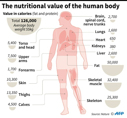 For early humans, cannibalism more than just a meal