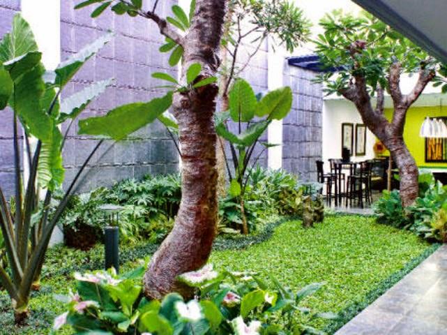 http://tukangtamankaryaalam.blogspot.com/2014/11/tukang-taman-minimalis-harga-murah.html