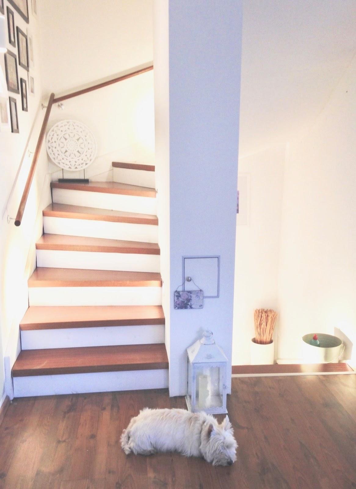 gl cksfeder diy f r fortgeschrittene unser neues. Black Bedroom Furniture Sets. Home Design Ideas