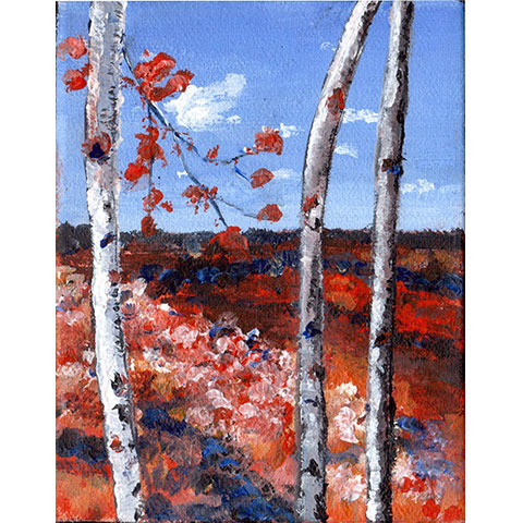 "Views through the trees #2- 5""x7"" Art Card"