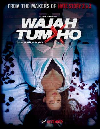 Poster Of Wajah Tum Ho 2016 Hindi 190MB DVDRip HEVC Mobile ESubs Watch Online Free Download downloadhub.net