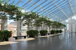 Why Hire an Interior Planscaper