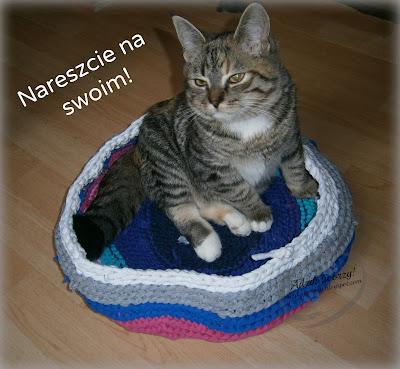 legowisko z recyklingu dla kota