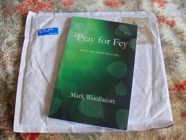 Pray for Fey de Mark Woollacott