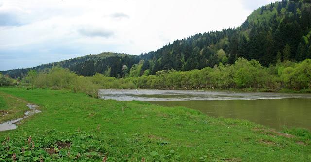 Ближайший к центру города участок реки Опир. Видна чёткая линия порога, пересекающего реку.
