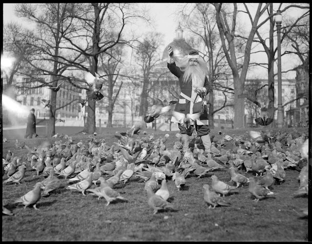 Santa feeds pigeons. Boston c.1920s