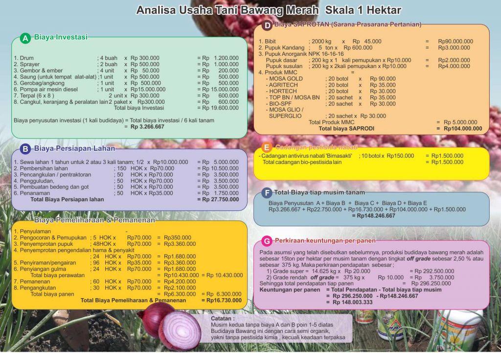 Contoh Analisis Usaha Tani Bawang Merah