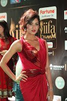 Videesha in Spicy Floor Length Red Sleeveless Gown at IIFA Utsavam Awards 2017  Day 2  Exclusive 05.JPG