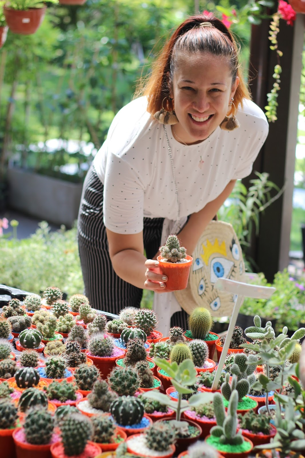 cactus caba
