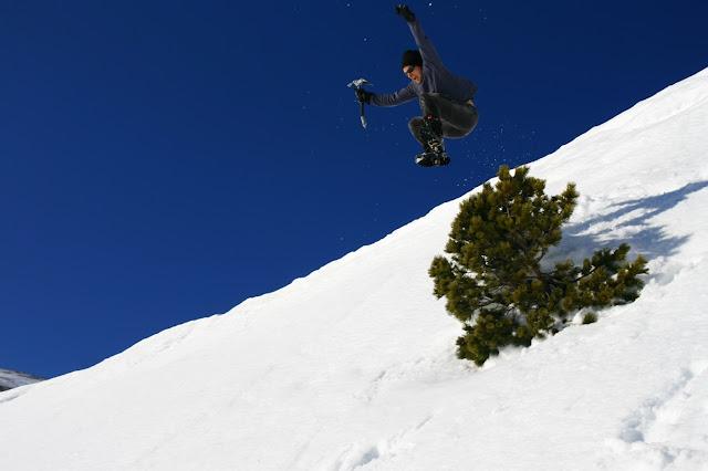 jumping bioblogia.net