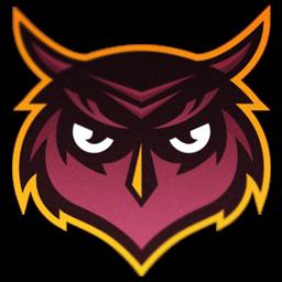 logo burung hantu vektor