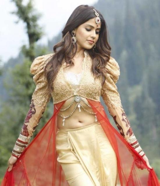 Telugu Movie actress Genelia Dsouza navel show
