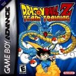 Dragon Ball Z - Team Training