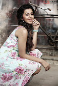 Nikki Galrani glamorous Portfolio-thumbnail-9