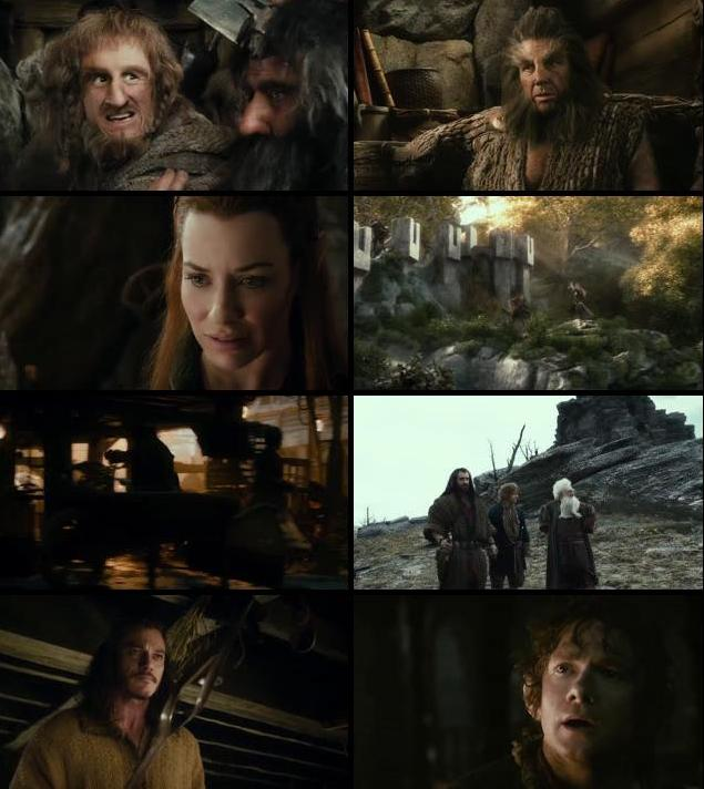 The Hobbit The Desolation Of Smaug 2013 Extended Dual Audio Hindi 720p BluRay