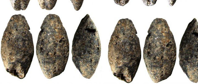 A 5,000-year-old barley grain discovered in Finland