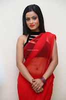 Aasma Syed in Red Saree Sleeveless Black Choli Spicy Pics ~  Exclusive Celebrities Galleries 086.jpg