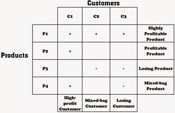 Project Management Customer Profitability Analysis - project analysis
