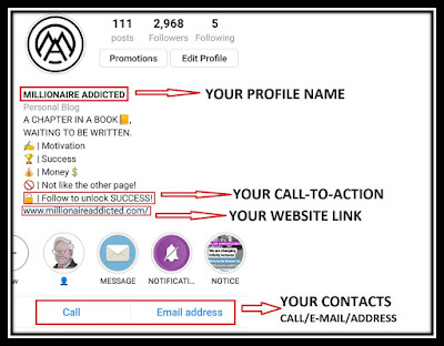 Create an effective Instagram Bio for business account, millionaire addicted