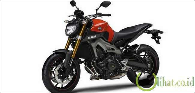 Yamaha MT-09/FZ-09